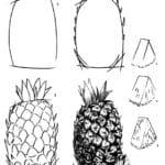 Как нарисовать ананас карандашом?