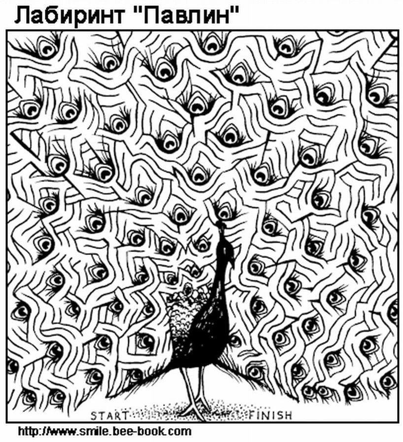 сложные-лабиринты-картинки-самые