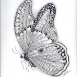 3 лет раскраска бабочка детей