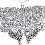 4 бабочки раскраски детей 3