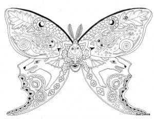 4 года раскраски бабочки