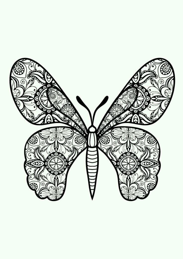 а4 раскраска бабочка распечатать