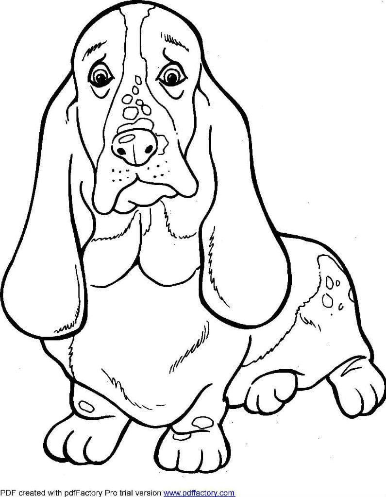 антистресс скачать собаки раскраски - Рисовака