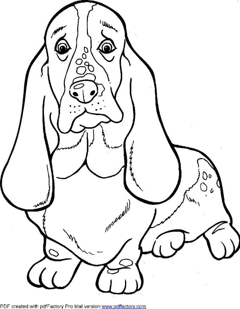 antistress-skachat-sobaki-raskraski антистресс скачать собаки раскраски