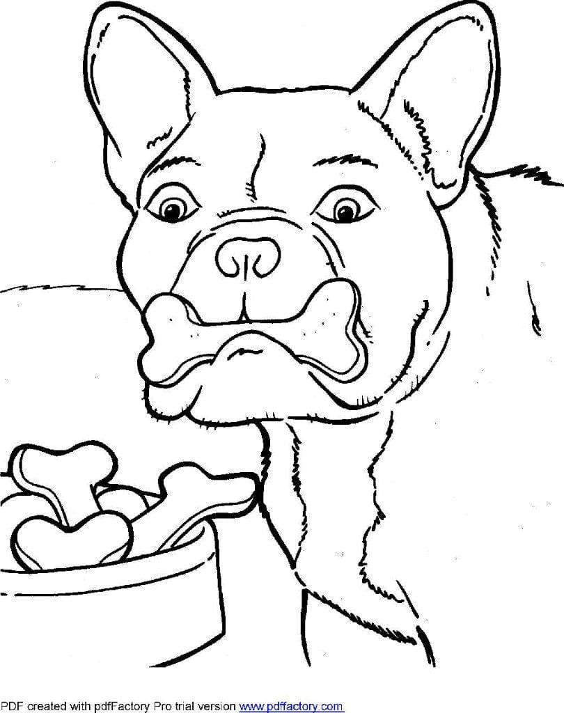 antistress-sobaki-v-horoshem-kachestve-raskraski антистресс собаки в хорошем качестве раскраски