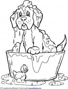 антистресс животные собаки раскраски