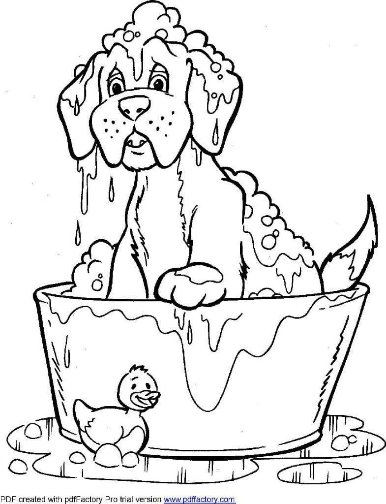antistress-zhivotnye-sobaki-raskraski антистресс животные собаки раскраски