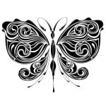 бабочка большие раскраска