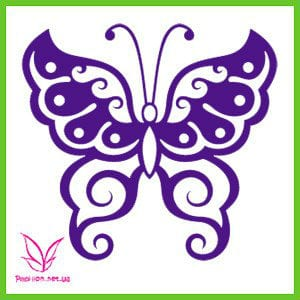 бабочка скачать раскраску