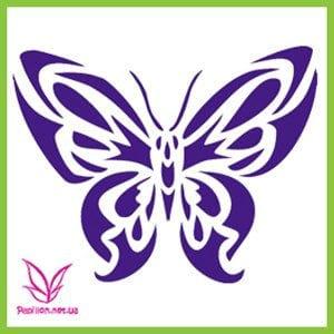 бабочки антистрессовые раскраски