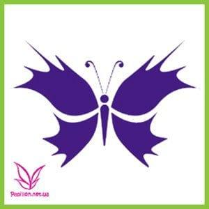 бабочки бесплатно формат а4 раскраски