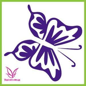 бабочки бесплатно раскраски