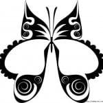 бабочки фото раскраски