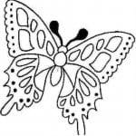 бабочки распечатать бесплатно раскраски для девочек