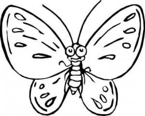 бабочки распечатать бесплатно раскраски