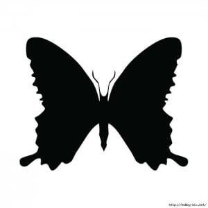 белая раскраска бабочка черно