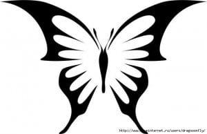 бесплатно бабочка цветная раскраска