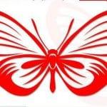 бесплатно бабочка раскраска для самых маленьких