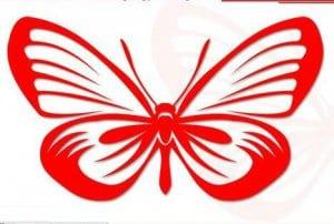 бесплатно бабочка раскраска маленькая
