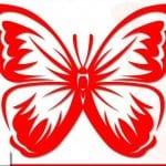 бесплатно бабочка раскраска