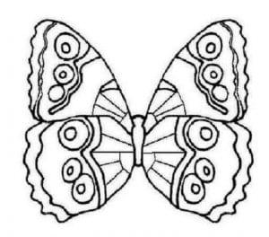 бесплатно бабочка распечатать раскраска