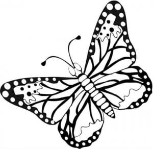 бесплатно бабочка рисунок для детей раскраска