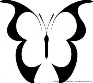 бесплатно бабочка скачать раскраску