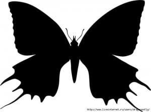 бесплатно бабочки 4 года раскраски