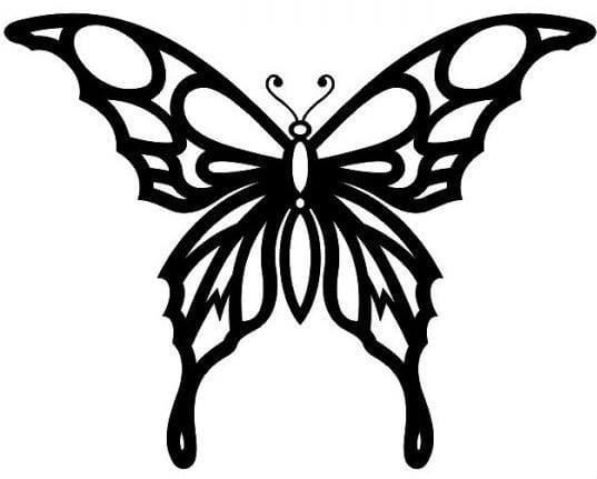 бесплатно бабочки раскраска крылья