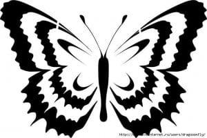 бесплатно бабочки  раскраски