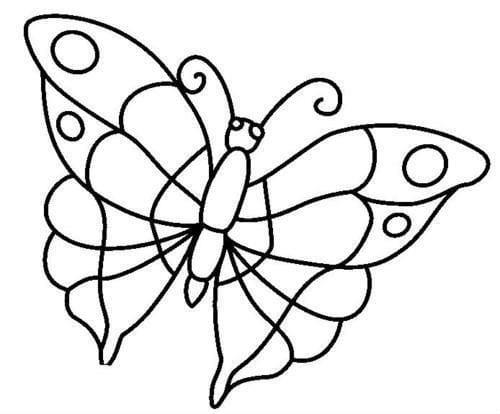 бесплатно бабочки раскраски декоративные