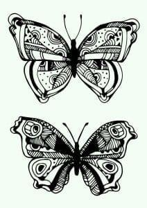 бесплатно бабочки скачать  раскраски