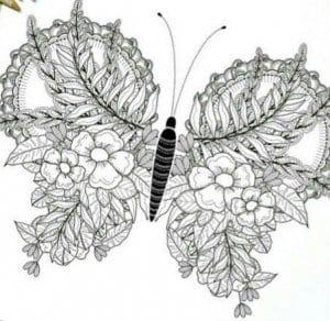 бесплатно белая раскраска бабочка черно