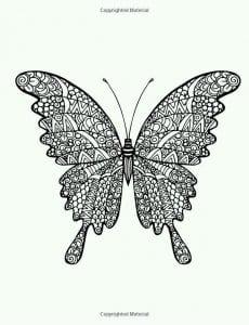 бесплатно большие раскраска бабочка