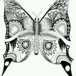 бесплатно детей бабочка картинка раскраска для