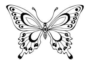 бесплатно детей бабочки распечатать  раскраски для