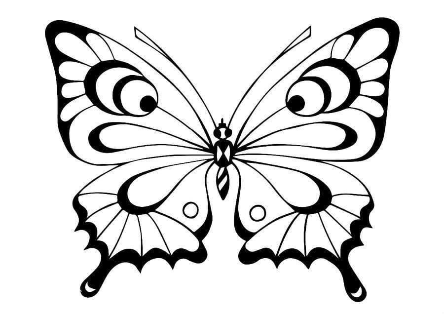 Детские раскраска бабочка