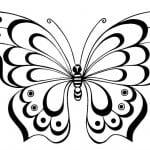 бесплатно детей распечатать раскраска бабочки для