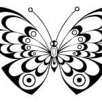 бесплатно детские раскраски бабочки
