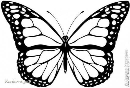 бесплатно девочек бабочки распечатать раскраска для