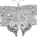 бесплатно девочек бабочки распечатать  раскраски для