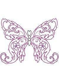 бесплатно для детей бабочка раскраска