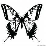 бесплатно  формат а4 раскраски бабочки