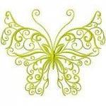 бесплатно и бабочки распечатать раскраски цветы
