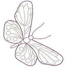 бесплатно картинки раскраски бабочки