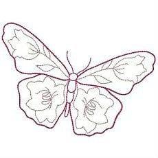 бесплатно красивых картинки раскраски бабочек