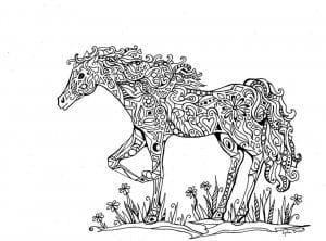 для девочек бесплатно лошади раскраски