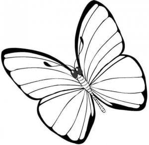 бесплатно маленьких бабочка раскраска для самых