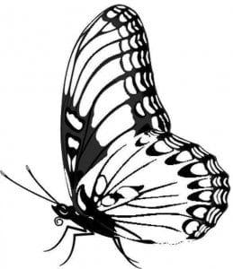 бесплатно малышей раскраска бабочка для