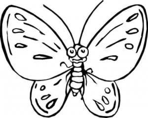 бесплатно про бабочек распечатать раскраски